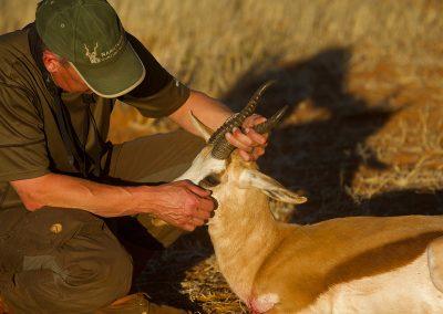 Namatubis-Hunting (10)
