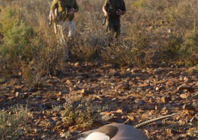 Namatubis-Hunting (9)